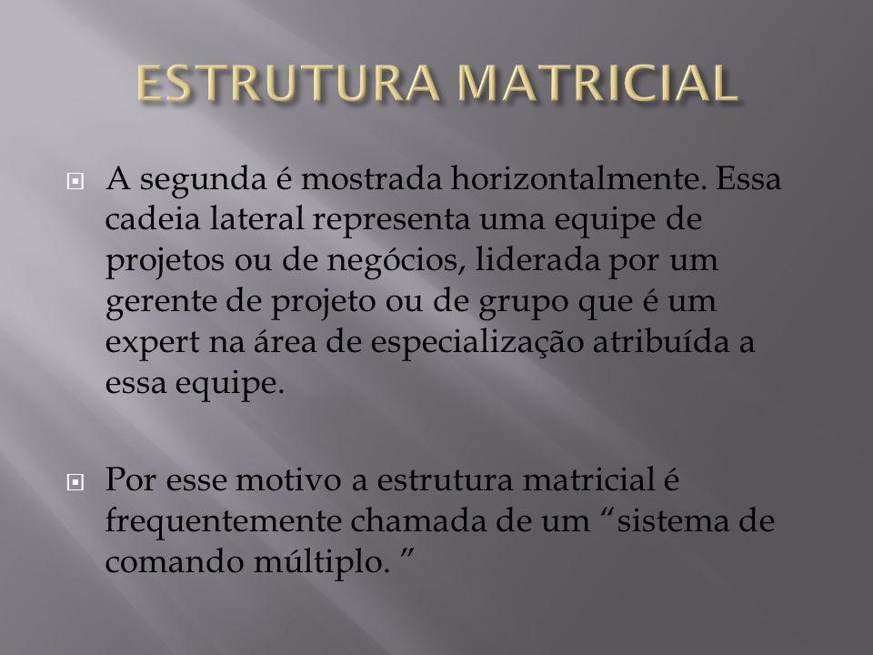 ESTRUTURA MATRICIAL
