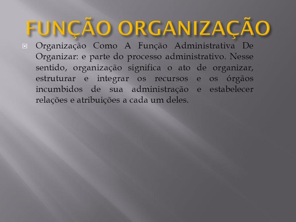 FUNÇÃO ORGANIZAÇÃO