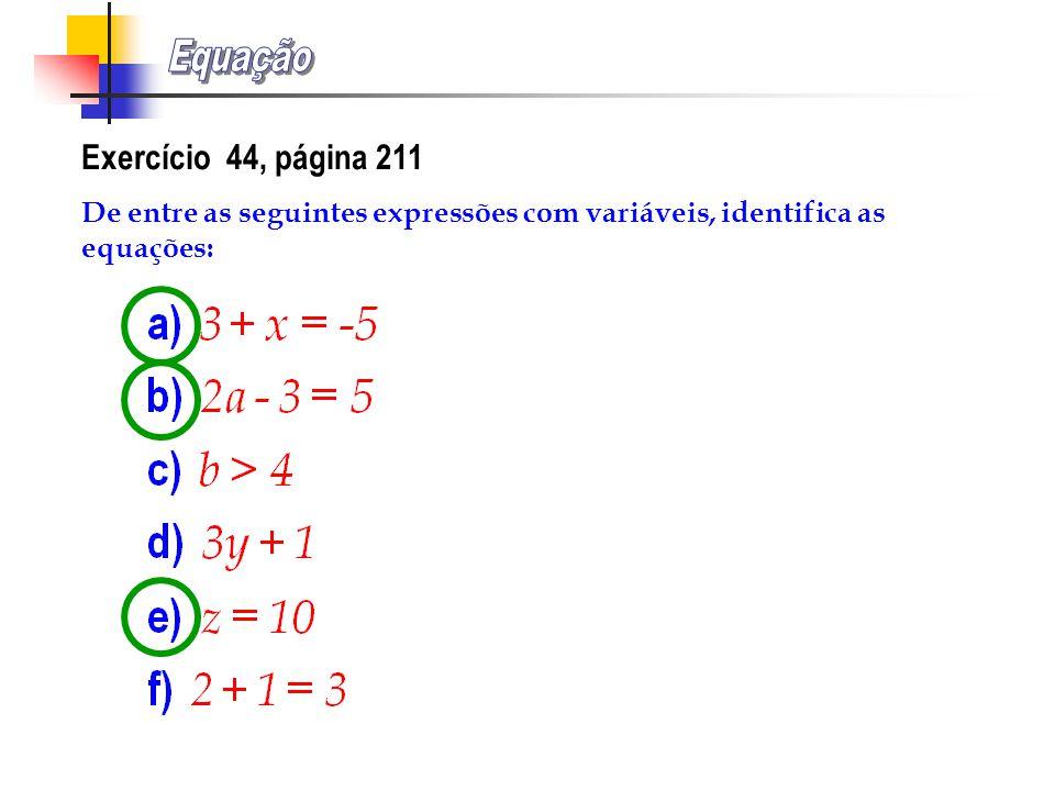 Equação Exercício 44, página 211