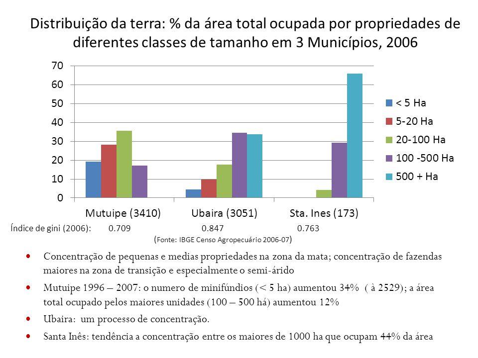 Distribuição da terra: % da área total ocupada por propriedades de diferentes classes de tamanho em 3 Municípios, 2006