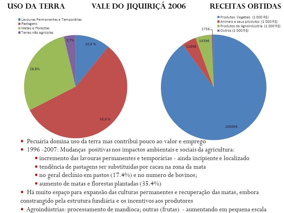 Pecuária domina uso da terra mas contribui pouco ao valor e emprego