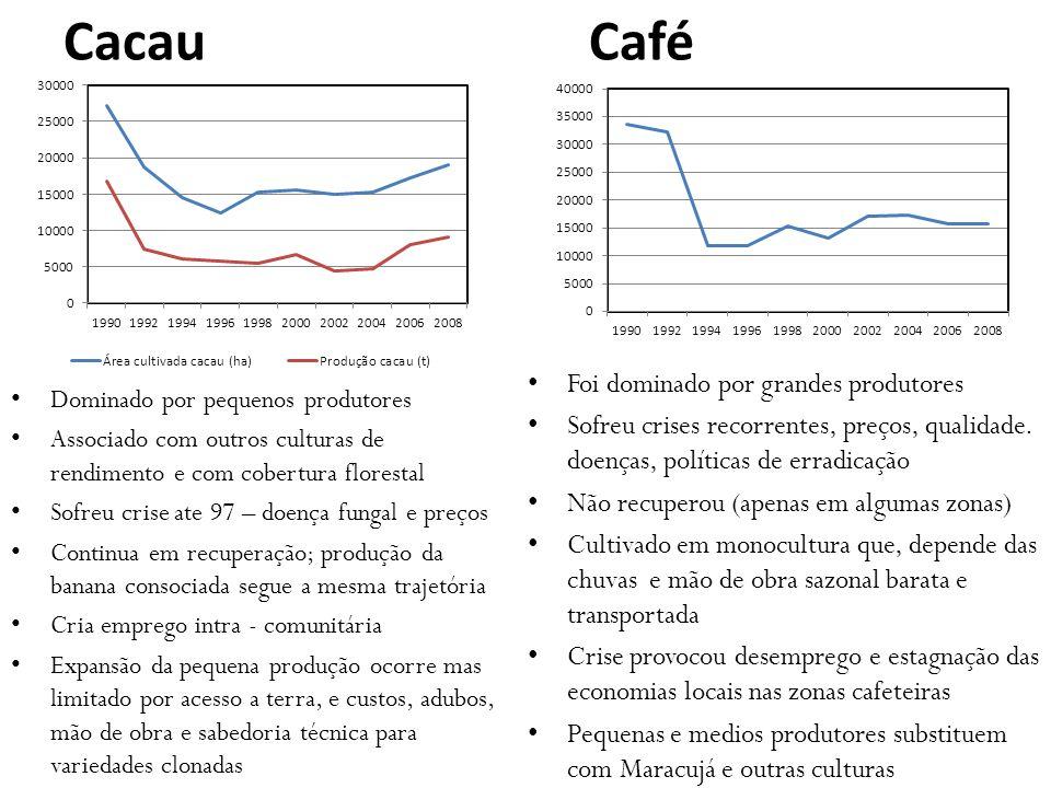 Cacau Café Foi dominado por grandes produtores