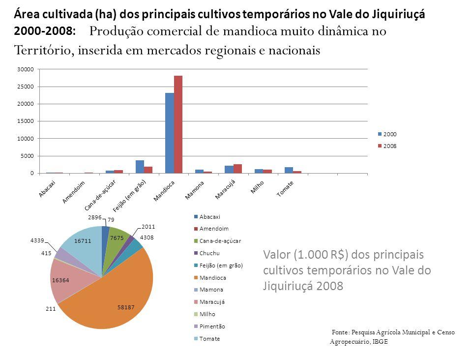 Área cultivada (ha) dos principais cultivos temporários no Vale do Jiquiriuçá 2000-2008: Produção comercial de mandioca muito dinâmica no Território, inserida em mercados regionais e nacionais