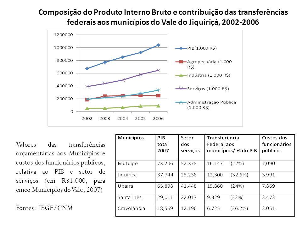 Composição do Produto Interno Bruto e contribuição das transferências federais aos municípios do Vale do Jiquiriçá, 2002-2006