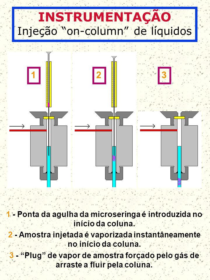 1 - Ponta da agulha da microseringa é introduzida no início da coluna.