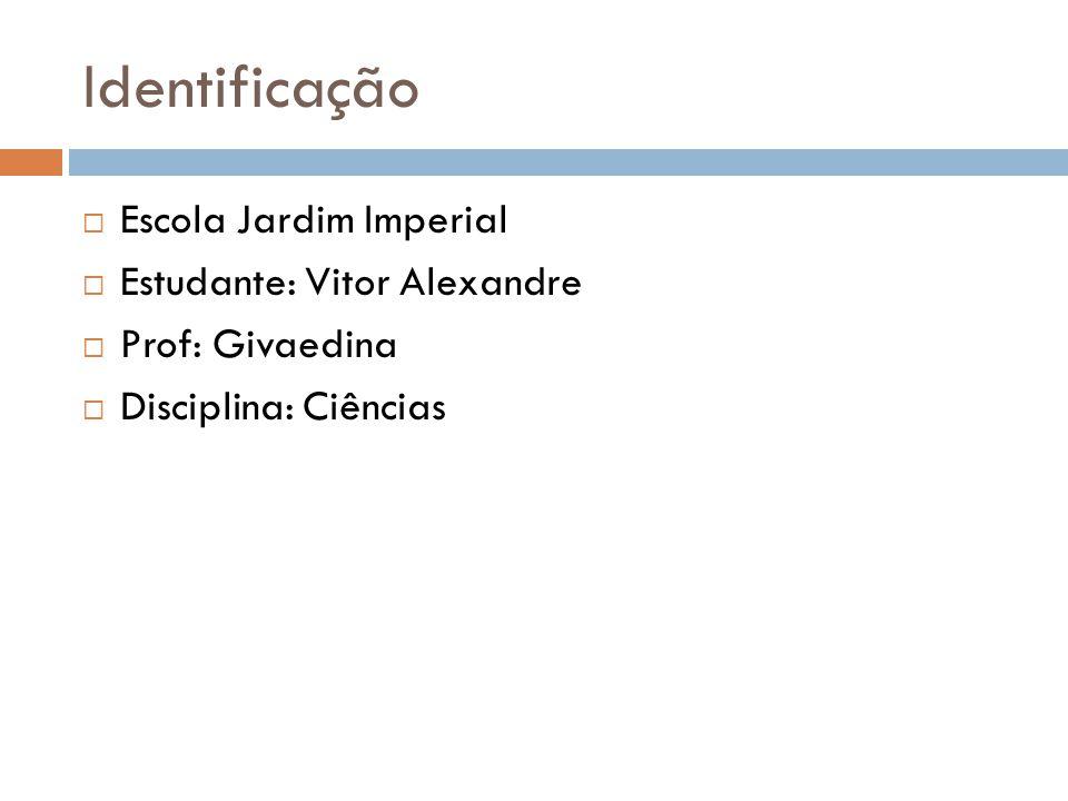 Identificação Escola Jardim Imperial Estudante: Vitor Alexandre