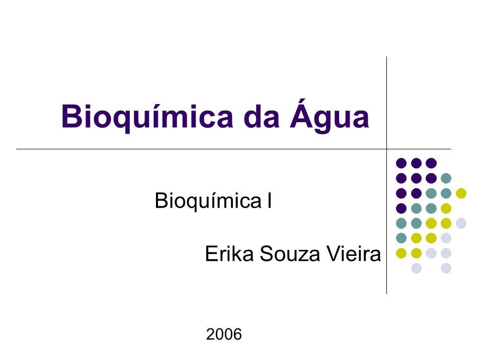 Bioquímica da Água Bioquímica I Erika Souza Vieira 2006