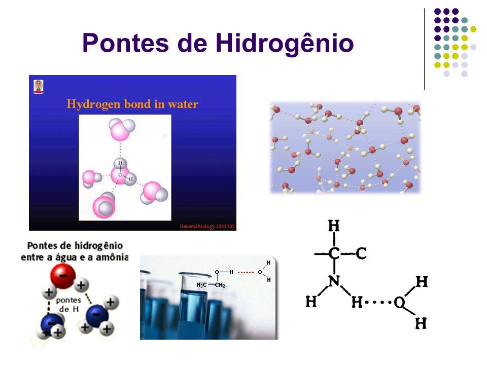 Pontes de Hidrogênio