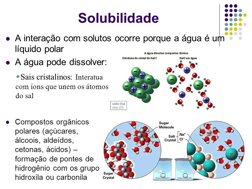 Solubilidade A interação com solutos ocorre porque a água é um líquido polar. A água pode dissolver:
