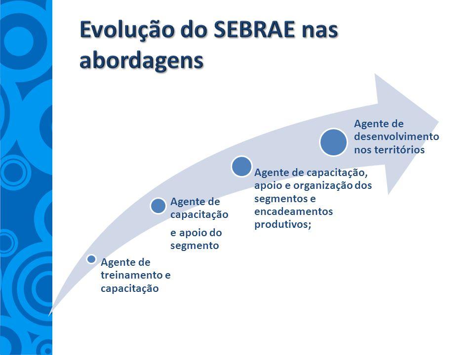 Evolução do SEBRAE nas abordagens