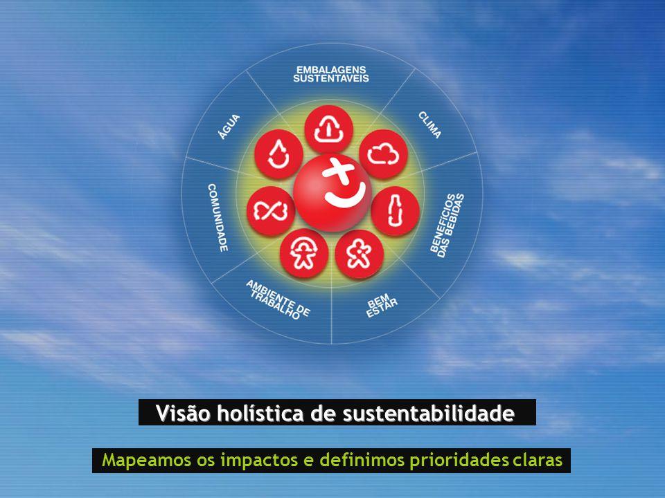 Visão holística de sustentabilidade