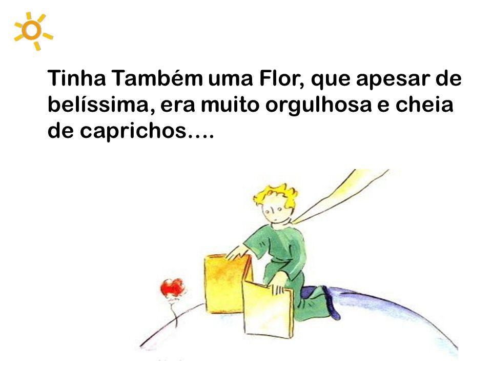 Tinha Também uma Flor, que apesar de belíssima, era muito orgulhosa e cheia de caprichos….