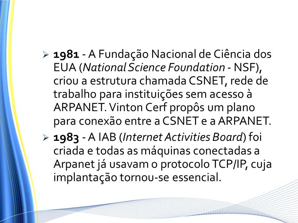 1981 - A Fundação Nacional de Ciência dos EUA (National Science Foundation - NSF), criou a estrutura chamada CSNET, rede de trabalho para instituições sem acesso à ARPANET. Vinton Cerf propôs um plano para conexão entre a CSNET e a ARPANET.