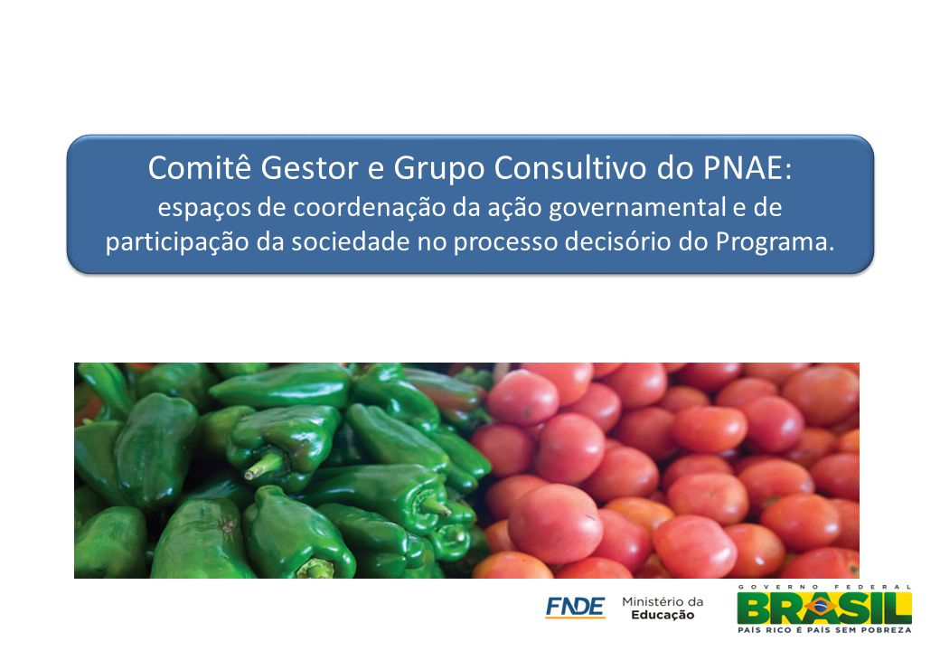 Comitê Gestor e Grupo Consultivo do PNAE: