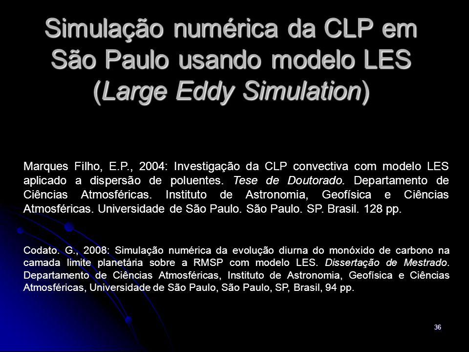 Simulação numérica da CLP em São Paulo usando modelo LES (Large Eddy Simulation)