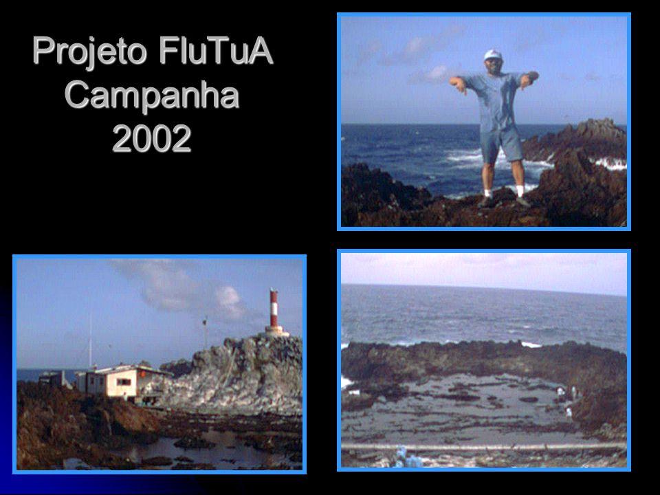 Projeto FluTuA Campanha 2002