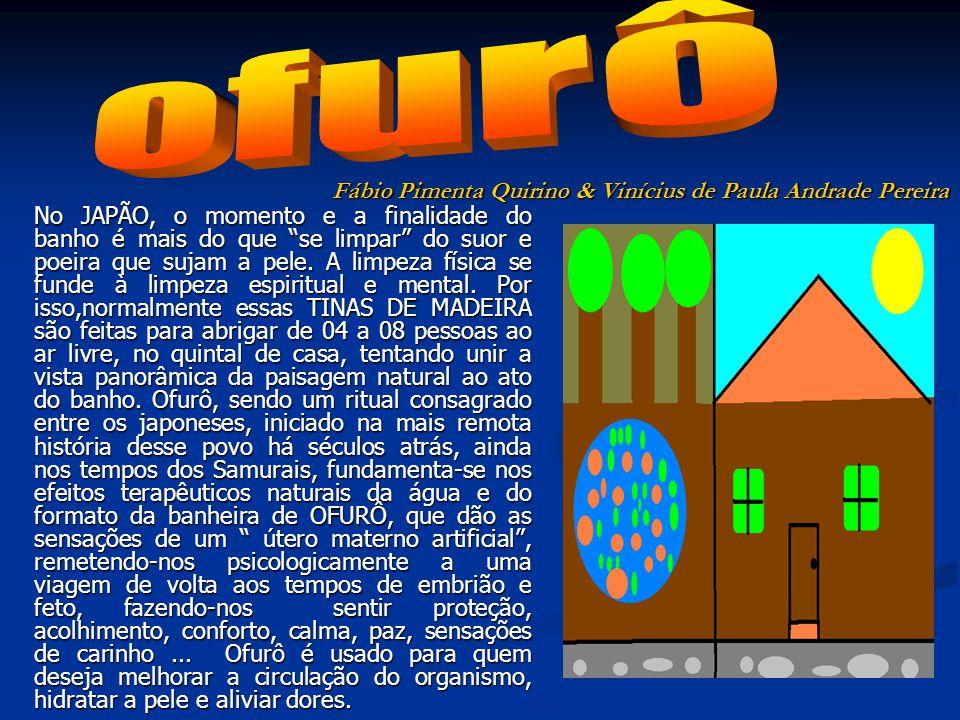 ofurô Fábio Pimenta Quirino & Vinícius de Paula Andrade Pereira
