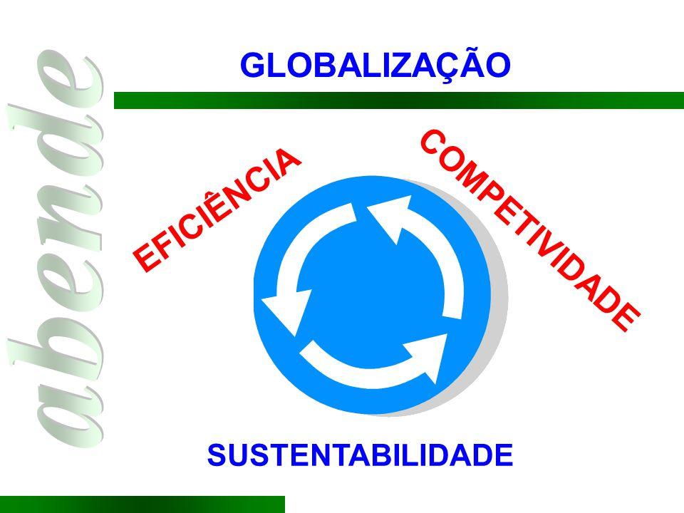 GLOBALIZAÇÃO EFICIÊNCIA COMPETIVIDADE SUSTENTABILIDADE