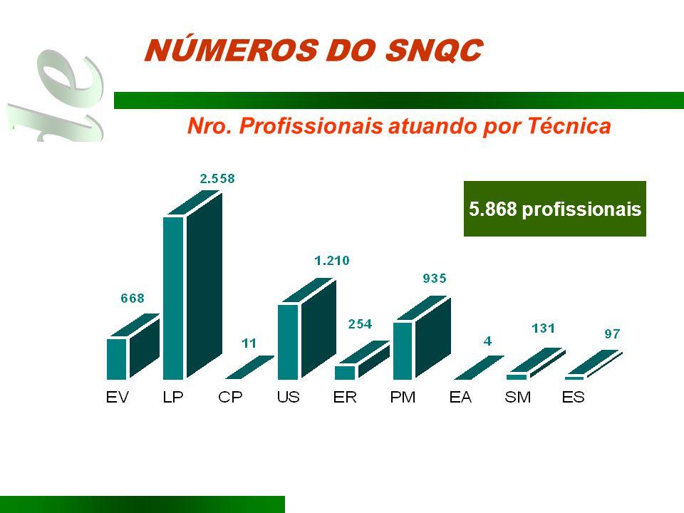 NÚMEROS DO SNQC Nro. Profissionais atuando por Técnica