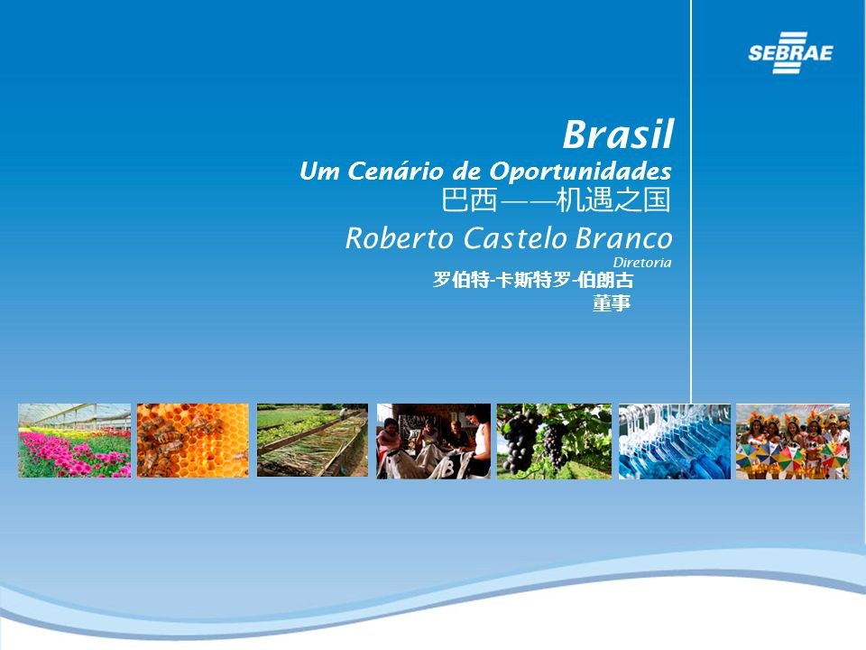Brasil 巴西——机遇之国 Roberto Castelo Branco Um Cenário de Oportunidades