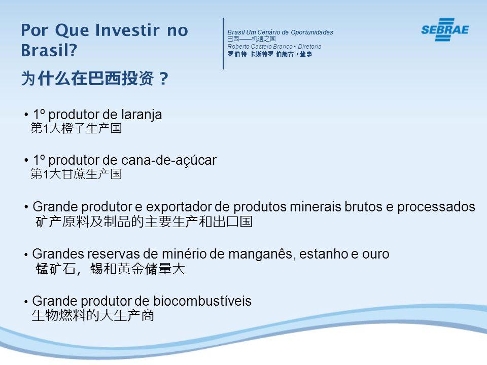 Por Que Investir no Brasil 为什么在巴西投资?
