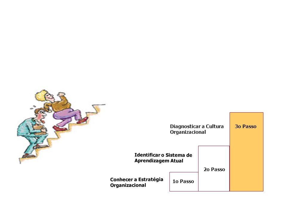 3o Passo Diagnosticar a Cultura Organizacional. Identificar o Sistema de Aprendizagem Atual. 2o Passo.