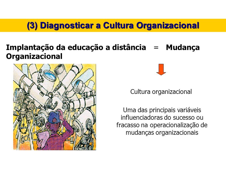 (3) Diagnosticar a Cultura Organizacional