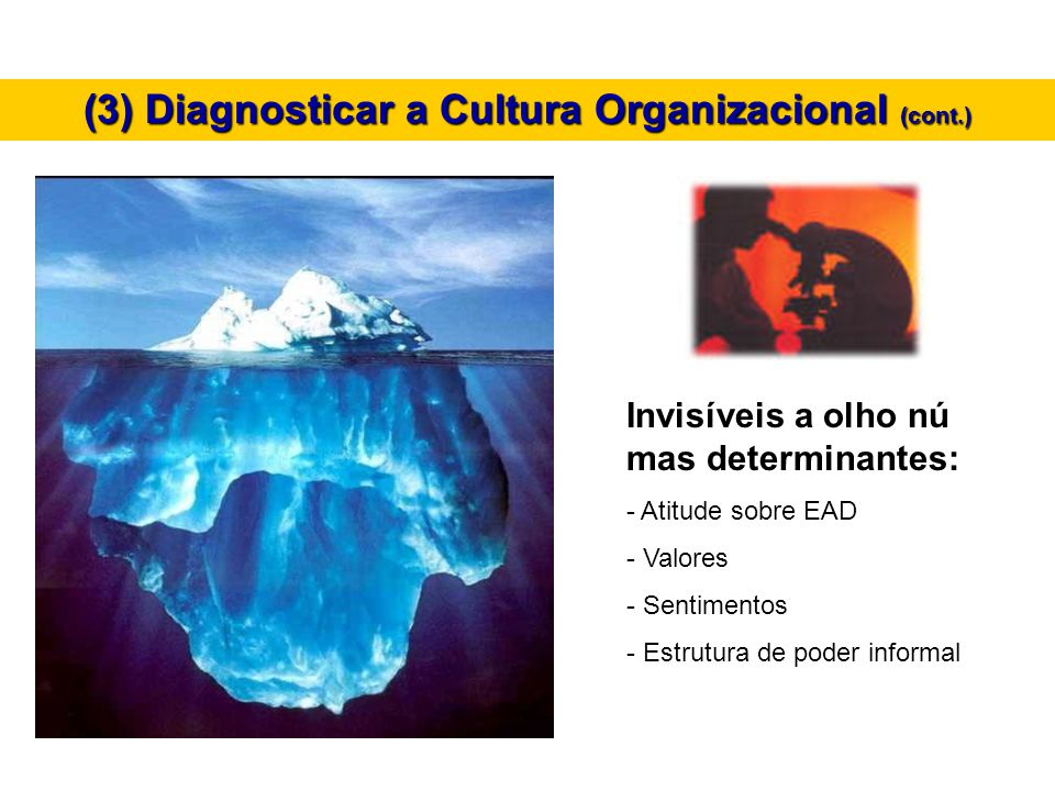 (3) Diagnosticar a Cultura Organizacional (cont.)