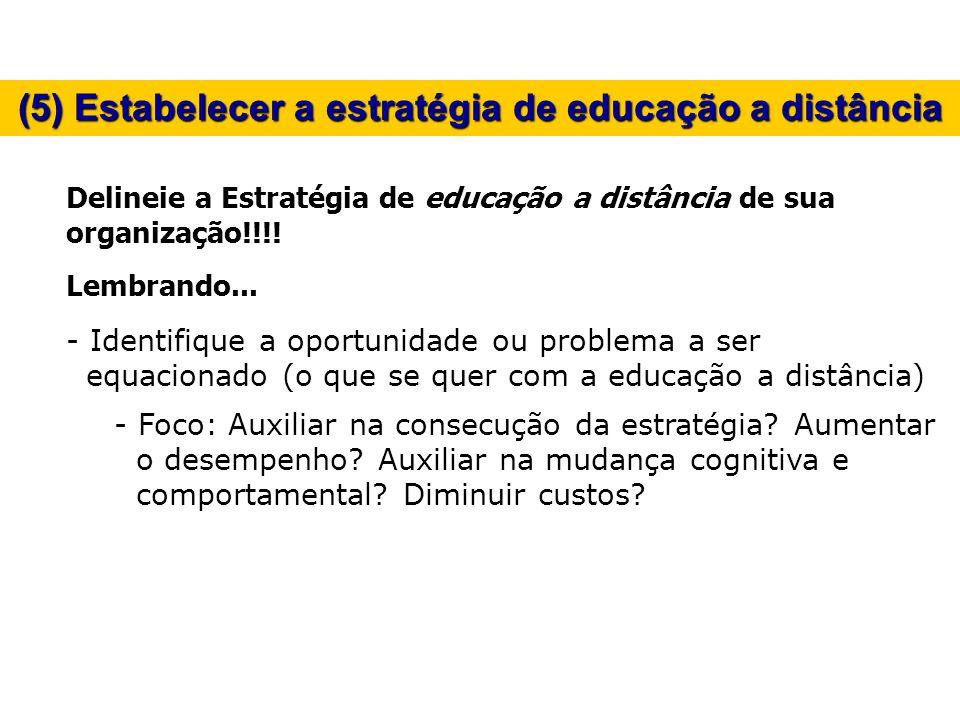 (5) Estabelecer a estratégia de educação a distância