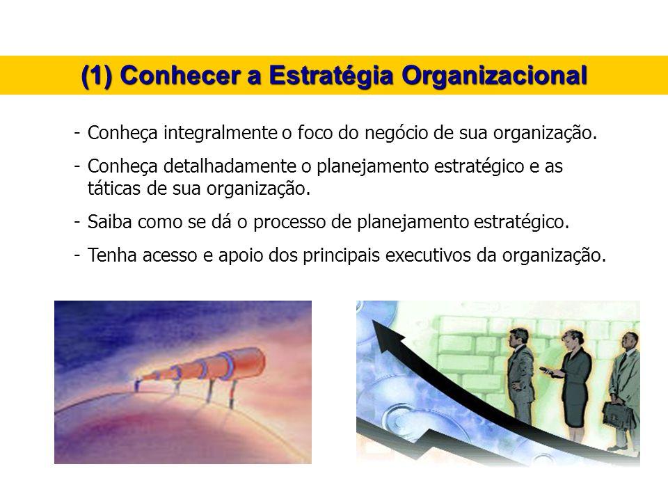(1) Conhecer a Estratégia Organizacional
