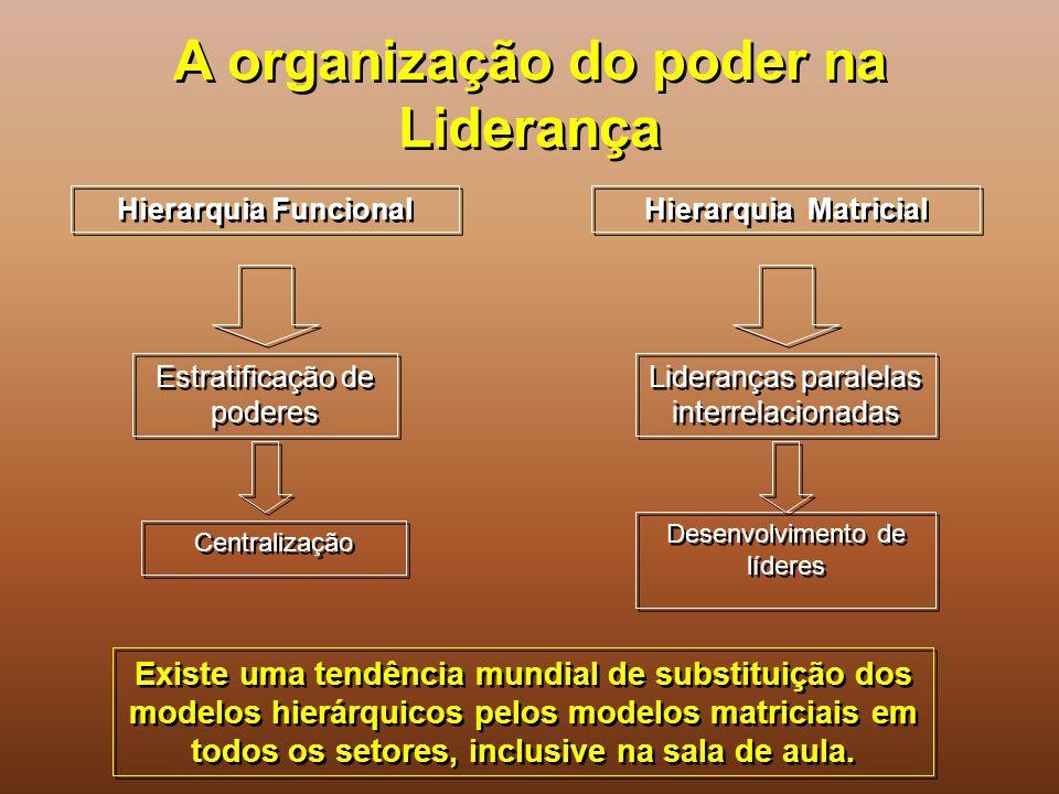 A organização do poder na Liderança