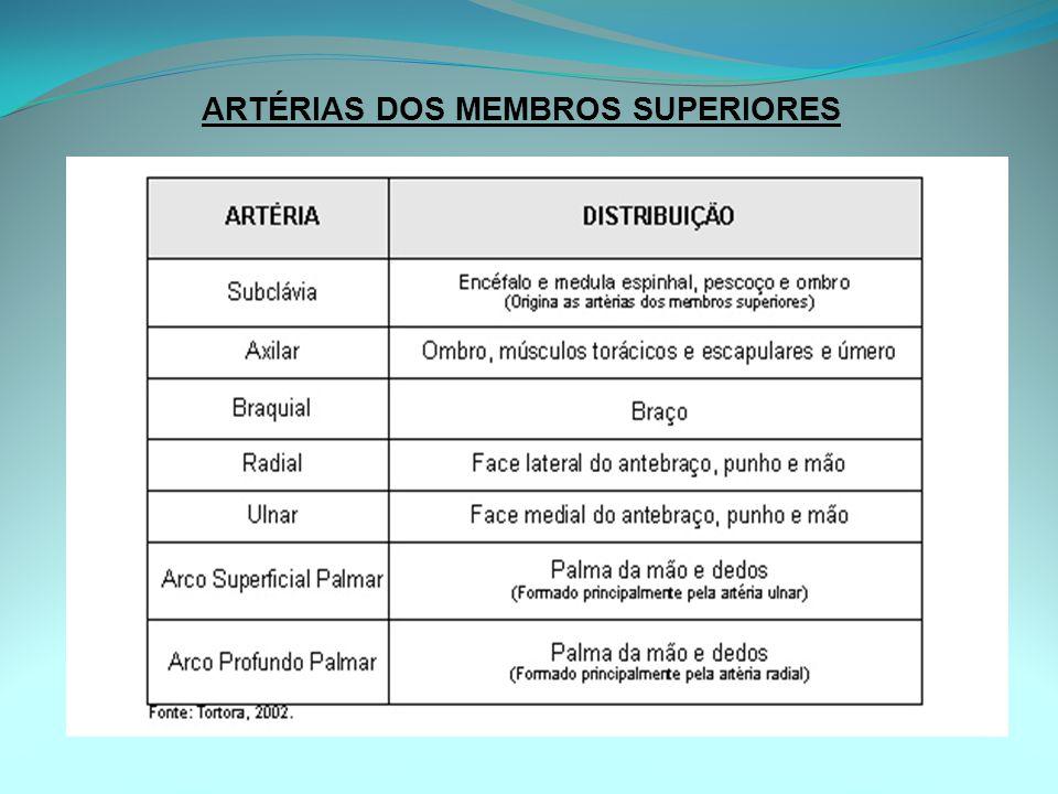 ARTÉRIAS DOS MEMBROS SUPERIORES