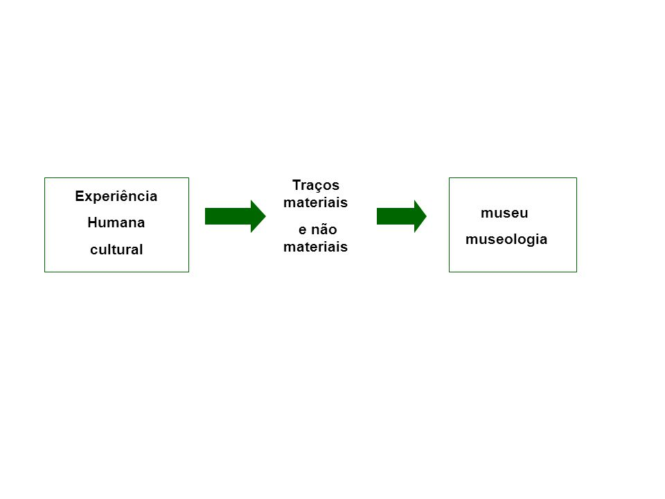 Traços materiais e não materiais Experiência Humana cultural museu museologia