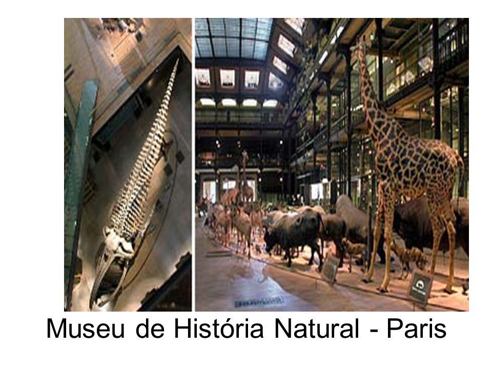 Museu de História Natural - Paris