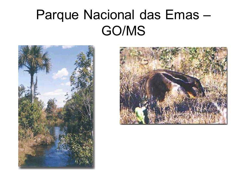 Parque Nacional das Emas – GO/MS