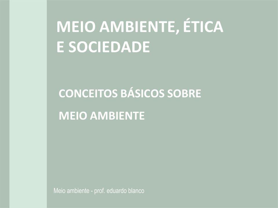 MEIO AMBIENTE, ÉTICA E SOCIEDADE