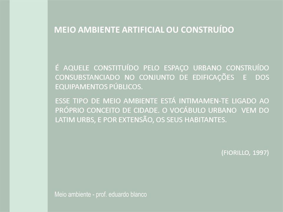 MEIO AMBIENTE ARTIFICIAL OU CONSTRUÍDO