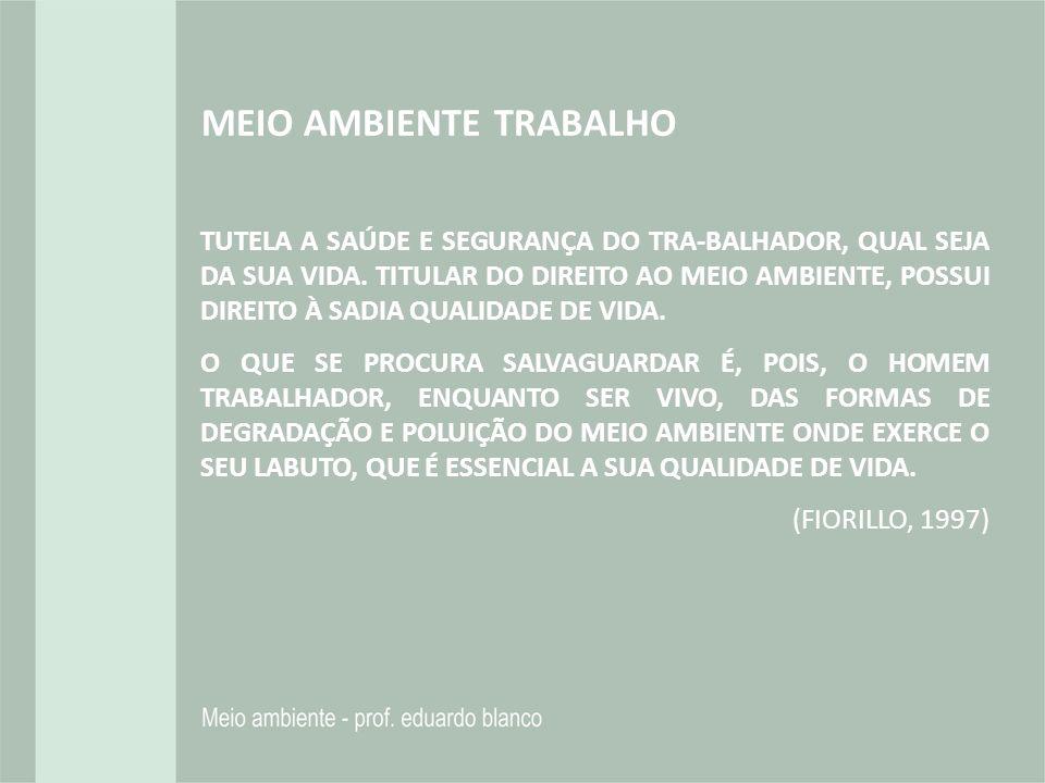 MEIO AMBIENTE TRABALHO