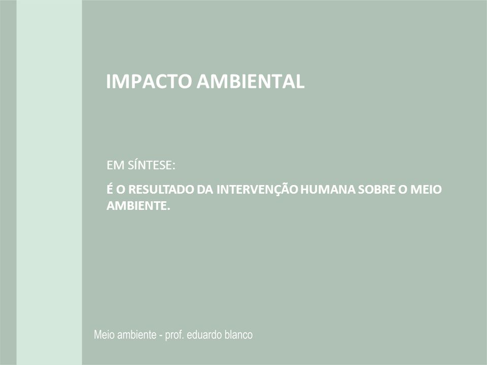 IMPACTO AMBIENTAL EM SÍNTESE: