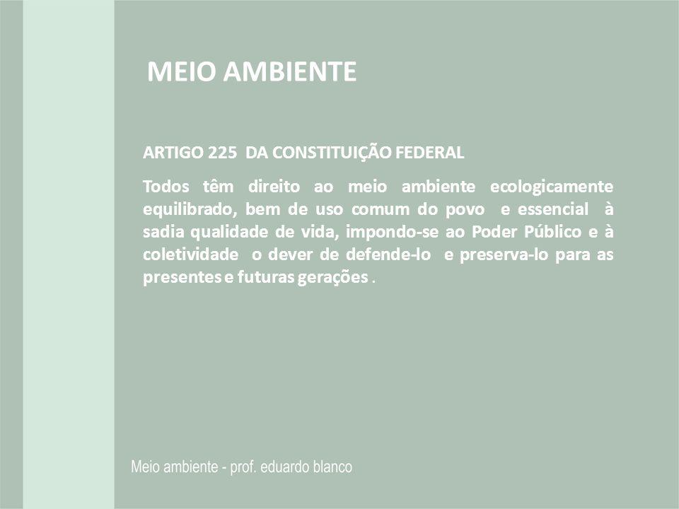MEIO AMBIENTE ARTIGO 225 DA CONSTITUIÇÃO FEDERAL