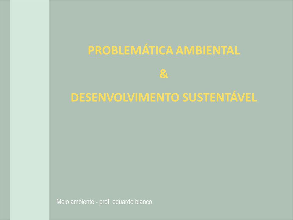 PROBLEMÁTICA AMBIENTAL DESENVOLVIMENTO SUSTENTÁVEL