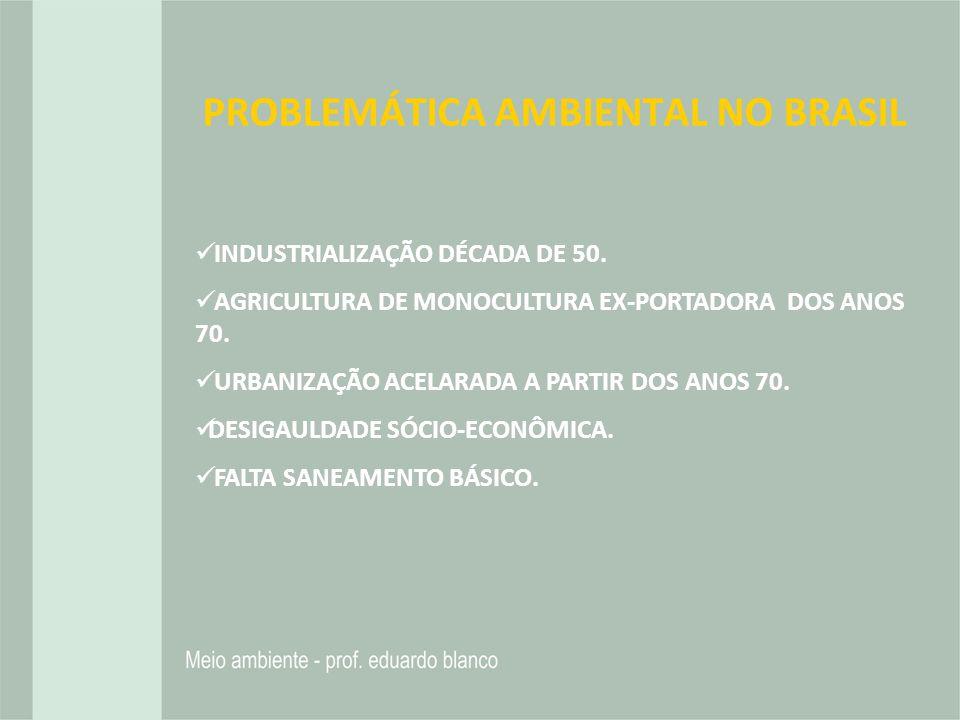 PROBLEMÁTICA AMBIENTAL NO BRASIL