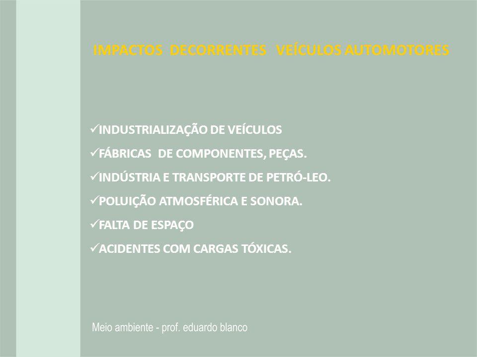 IMPACTOS DECORRENTES VEÍCULOS AUTOMOTORES