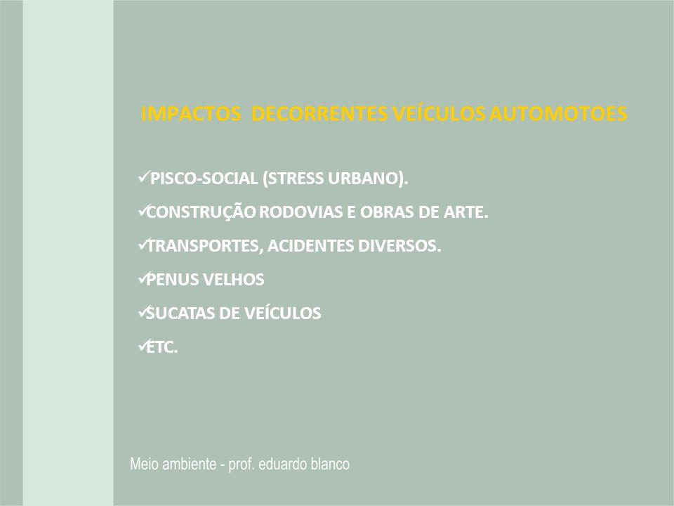 IMPACTOS DECORRENTES VEÍCULOS AUTOMOTOES