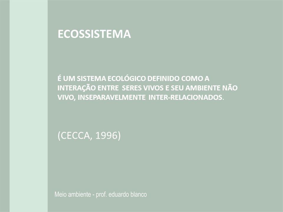 ECOSSISTEMA É UM SISTEMA ECOLÓGICO DEFINIDO COMO A INTERAÇÃO ENTRE SERES VIVOS E SEU AMBIENTE NÃO VIVO, INSEPARAVELMENTE INTER-RELACIONADOS.