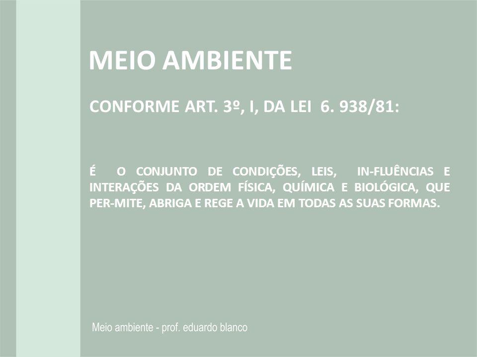 CONFORME ART. 3º, I, DA LEI 6. 938/81: