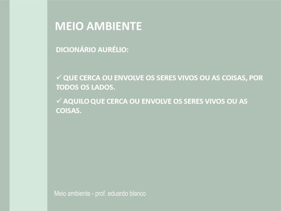 MEIO AMBIENTE DICIONÁRIO AURÉLIO: