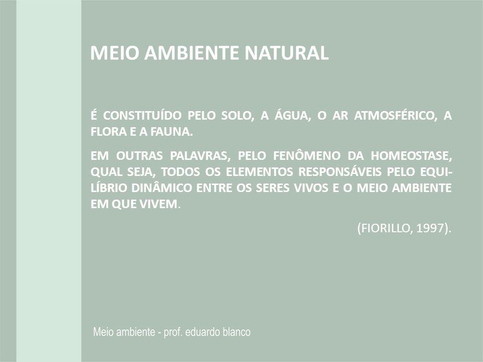 MEIO AMBIENTE NATURAL É CONSTITUÍDO PELO SOLO, A ÁGUA, O AR ATMOSFÉRICO, A FLORA E A FAUNA.