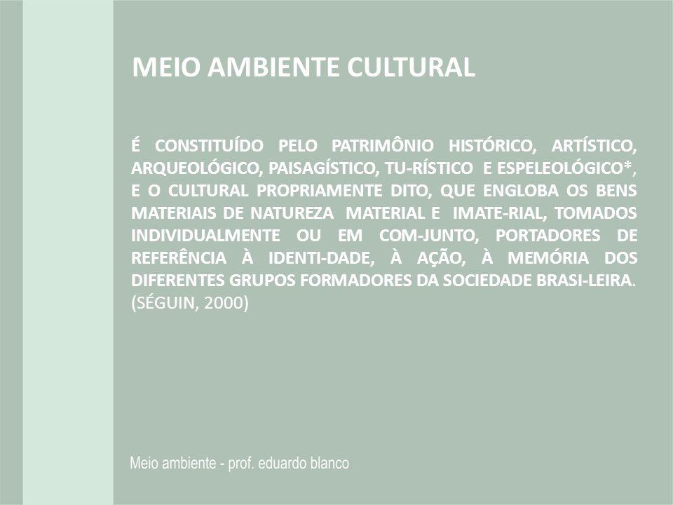 MEIO AMBIENTE CULTURAL