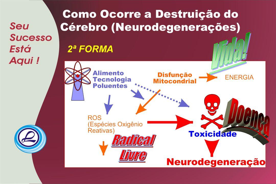 Como Ocorre a Destruição do Cérebro (Neurodegenerações)